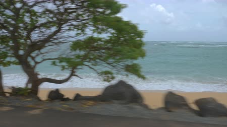 Driving Along Beach at Ocean. a passenger driving view looking at the ocean on Oahu island in Hawaii