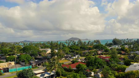 Оаху : Aerial Residential Rising on Kailua Beach. aerial view moving up over a neighborhood in Hawaii looking out at Kailua Beach Стоковые видеозаписи