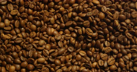 dark roast : Top View of Coffee Beans in a Grinder Shot on Red Stock Footage