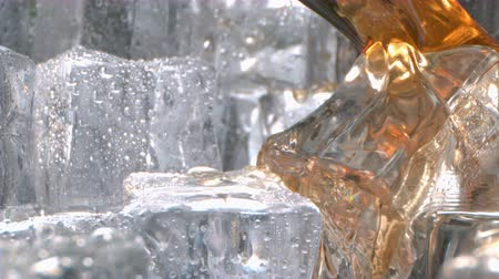 Бордо : Super Slow Motion of Whiskey Pouring in a Glass with Ice Стоковые видеозаписи