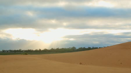 kuruluk : Morning sunrise sand dune desert outback Australia landscape Stok Video
