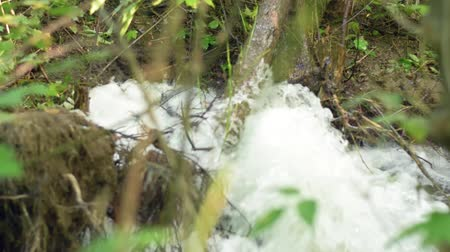 Water striking from the ground in the forest. Leakage of urban water pipes in the park