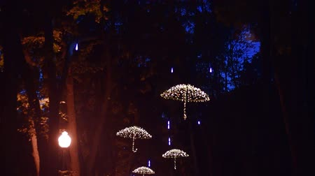 украшенный : Ukraine Kharkiv September 3 2017: Led umbrellas on the trees of the alley in the central park. Full HD video vertical panorama. Night video shooting