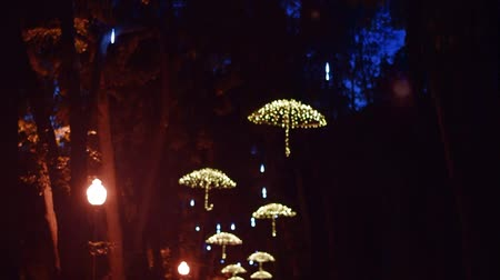 Ukraine Kharkiv September 3 2017: Led umbrellas on the trees of the alley in the central park. Full HD video vertical panorama. Night video shooting