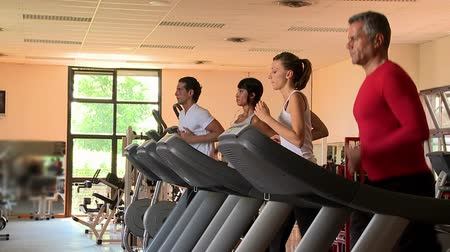 четыре человека : Group of healthy people exercising with treadmill at gym. Athletic people running focused on treadmill. Four sports persons run at the gym in their leisure time. Стоковые видеозаписи