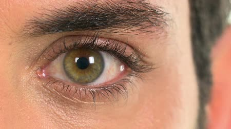 olhos verdes : Detail of a green eye of a man. Close up of a male eye. Man looking at camera. Eye exam eye detail. Stock Footage
