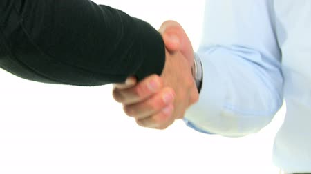 tratar : Professional businessman and businesswoman giving handshake isolated on white background. Close up of a business handshake for a new deal. Agreement between two businesspeople for a new business deal.