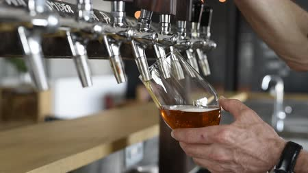 официант : Hand of bartender pouring a large lager beer in tap. Closeup of hand serving beer in glass using tap. Close up of barman hand at beer tap pouring an amber draught beer at pub.