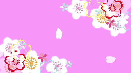 admission : It is a beautiful and gentle cherry blossom in Japan animation Stock Footage