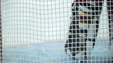 bajnok : View on the back of the ice-hockey goalkeeper