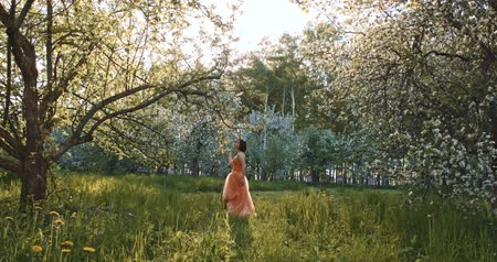 mágico : Princess in a mystical garden Stock Footage