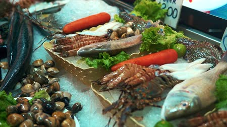 labrax : Fresh various seafood on crushed ice Stock Footage