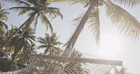 plage : POV. Young beautiful woman relaxing on the hammock under the coconut trees. Exotic, relax, lifestyle, advertising, commercial concept. Close shot on camera with 12 bit color depth.