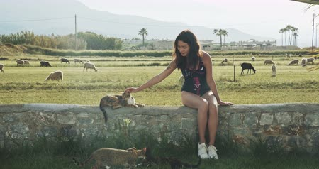 mouton : Woman in swimsuite in picturesque place [etting cats, filmed on cinema camera, 12 bit color