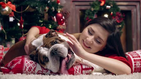 buldog : charming asian girl loves and caresses a cute funny bulldog under the Christmas tree. Best friends. Christmas. New Year. The concept of advertising. suitable for christmas promotion