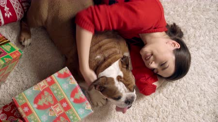 buldog : charming girl plays cute funny bulldog under christmas tree. doggie is very cute playing with a Christmas toy. Christmas. New Year. The concept of advertising. suitable for christmas promotion Wideo