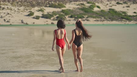 lesbijki : Gay couple in swimsuits walking at the beach, back to camera. Lesbian, lgbt, pride, travel concept. Wideo