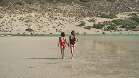 lesbijki : Lesbian couple in swimsuits walking at the beach, back to camera. Lesbian, lgbt, pride, travel concept. Wideo