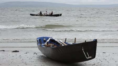 aviron : athlets concurrence dans toute l'Irlande Currach Racing, lors traditionnel Un festival Tóstal à Galway