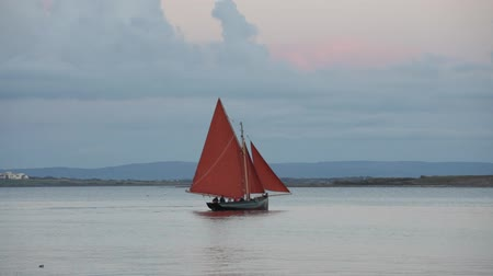 irlandia : Traditional wooden boat Galway Hooker, with red sail leaving Galway docks in the evening. Ireland.