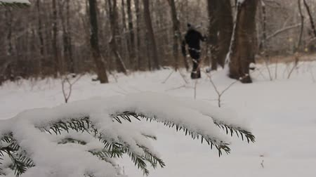 In the winter city park. Ski ramble Stock Footage