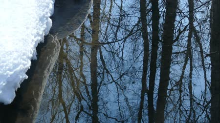 trees and blue spring sky are reflected in a non-freezing stream