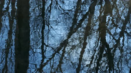 Trees against the blue sky are reflected in the spring streams