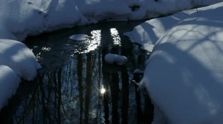 Sun flare on the surface of a non-freezing stream