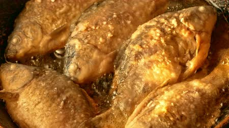 Crucian fried in a pan with hot oil Stock Footage