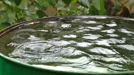 enferrujado : Rain barrel