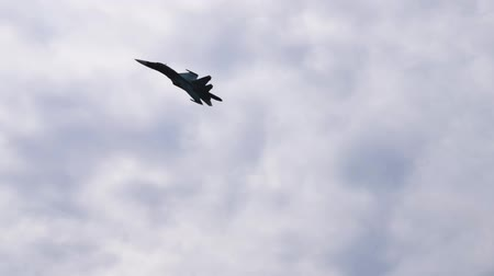 lutador : Fighter supersonic plane performing in cloudy sky at the airshow. Airforce, modern war planes