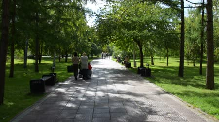 parky : People walking in park on sunny summer day Dostupné videozáznamy