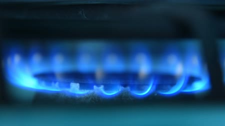 fogão : Close-up shot of blue burning fire of gas stove