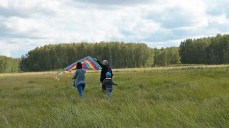 grandad : Young mother, little child and grandfather are going to fly big rzindow kite in the countryside. Active family lesiure outdoor Stock Footage