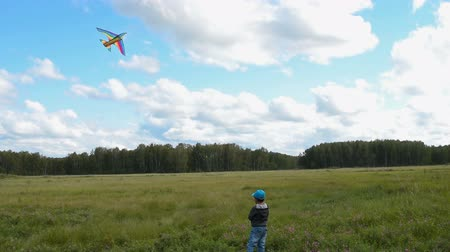 Little boy having fun flying rainbow bird-shaped kite in the countryside. Outdoor activites and leisure for children Стоковые видеозаписи