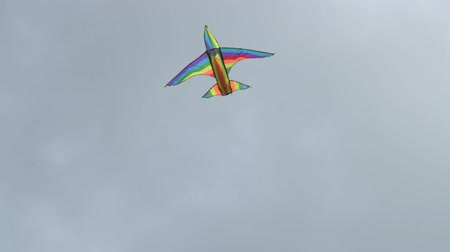 Rainbow bird-shaped kite flying in strong wind against cloudy sky