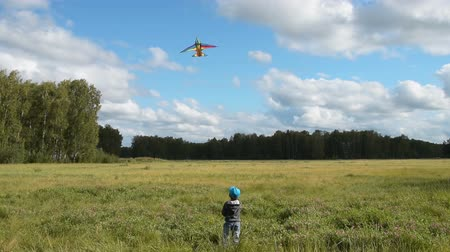 pipa : Little boy flying rainbow kite in the woods. Active leisure and fun outdoor Stock Footage
