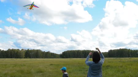 Mother and little son flying kite. Active family leisure outdoor Стоковые видеозаписи