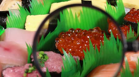 magnifier : Nigiri Sushi and magnifying glass