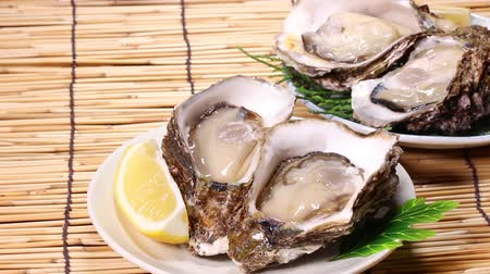 oysters : Fresh oysters with lemon
