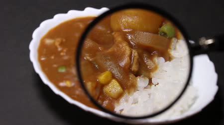 scrutiny : Curry rice and magnifying glass
