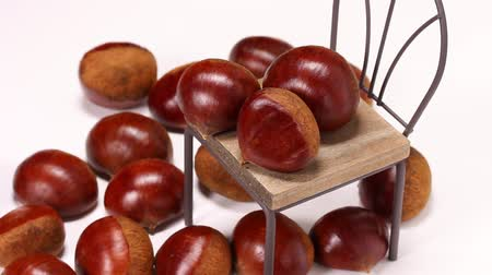 esik : Fresh chestnuts on the chair
