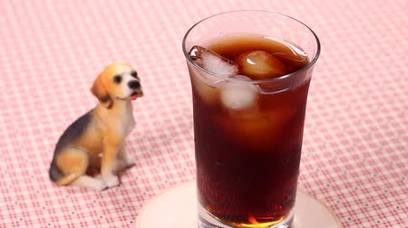 turn table : Iced coffee and dog figurine