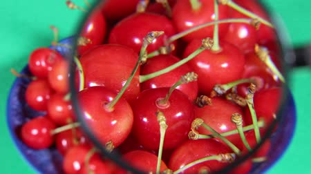büyütmek : Many Cherries and magnifying glass
