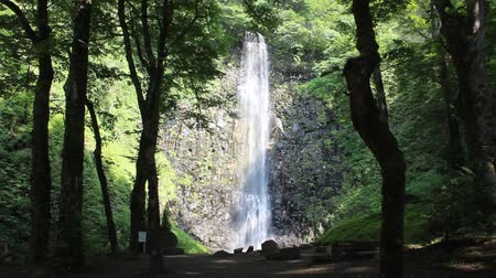 ion : Tamasudarenotaki waterfall, yamagata prefecture Japan