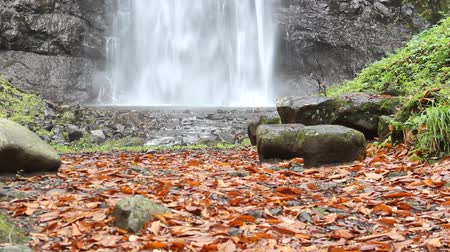 ion : Tamasudarenotaki waterfall in Autumn, Yamagata prefecture Japan