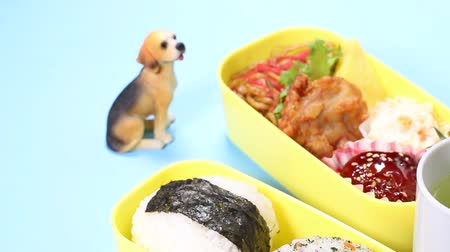 almôndega : Japanese bento box  and Dog figurine
