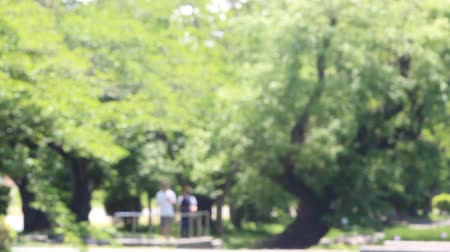 People taking a walk in the park