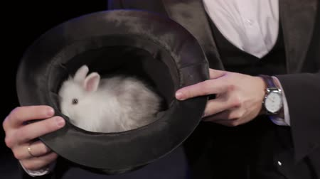 trik : Magician shows a rabbit sitting in a hat