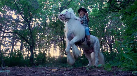 Çingene : Young girl in cowboy hat riding a white horse. The stallion rises to his hind legs.